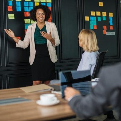brainstorming-businesswomen-colleagues-1093913 (1)